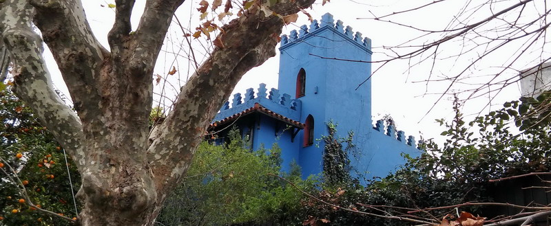 Private out of the beaten path walking tour Buenos Aires blue castle